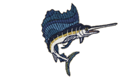 芭蕉梶木 Indo-Pacific sailfish
