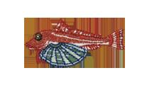 竹麦魚 Gurnard